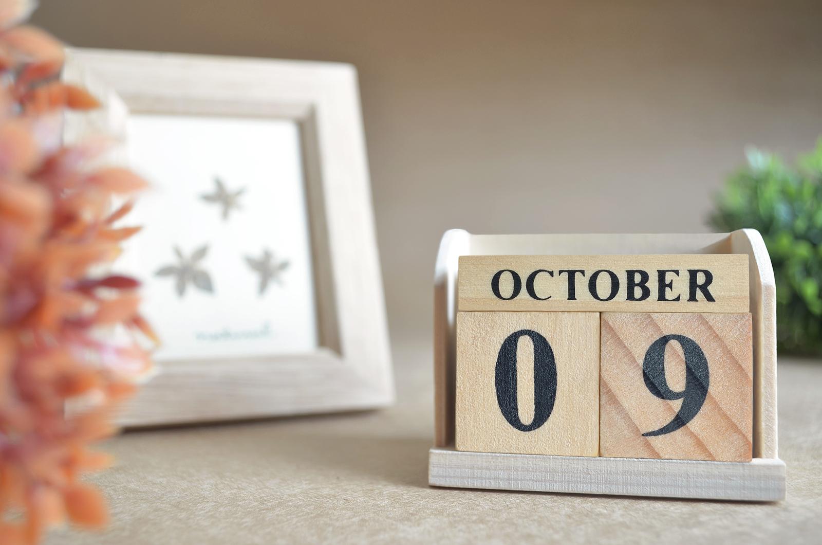 October 9, 2020: Art Shuttle Houston — New York